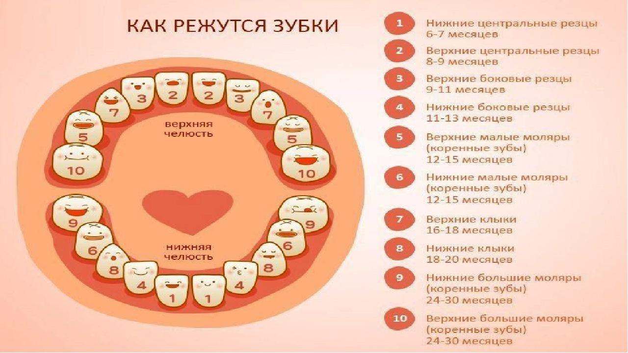 Как можно понять, что у ребенка режутся зубы, фото
