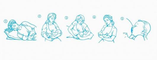 Важные позы для кормления новорожденного ребенка, принципы модернизации поз при лактостазе