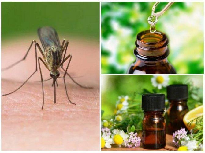 Эффективные народные средства от укусов комаров