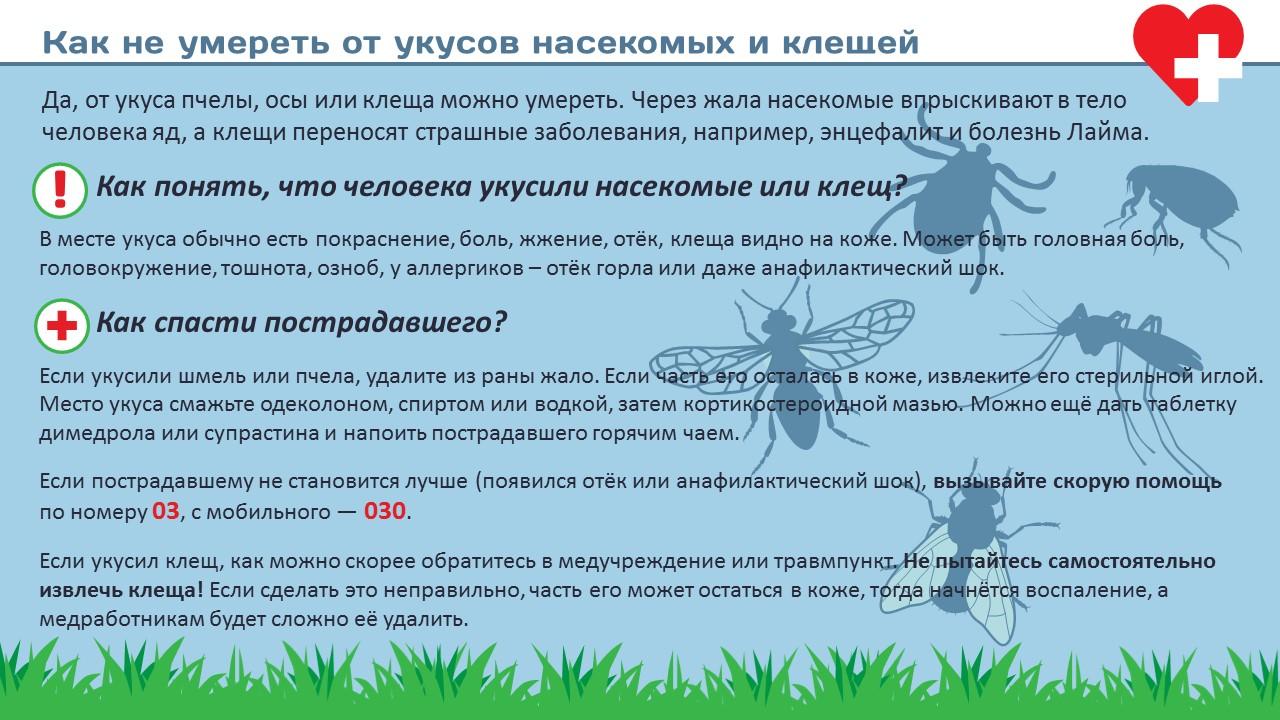 Что делать, если ребенка покусали комары, мошки, пчелы, осы – первая помощь при укусах насекомых