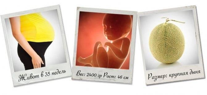 35 неделя беременности: что происходит на этом сроке?