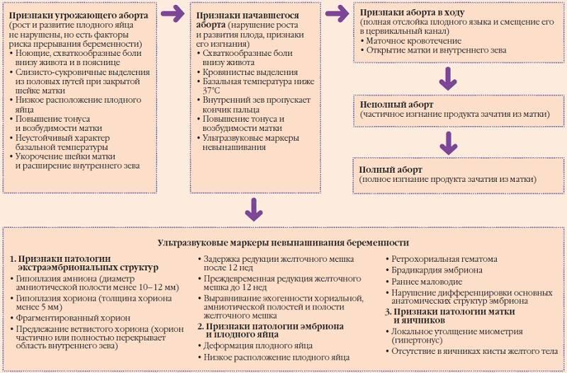 3 главных признака замершей беременности - причины, профилактика, лечение