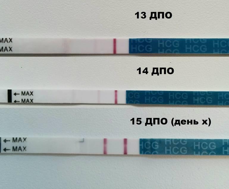 Тест на беременность до задержки – покажет или нет