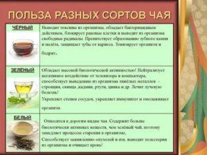 Чай в прикорме ребенка | уроки для мам