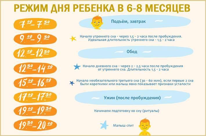 Сколько должен спать ребенок в 8 месяцев | уроки для мам