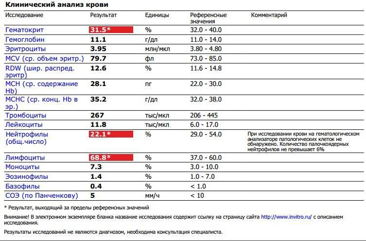 Лимфоцитоз у детей: относительный и абсолютный, норма и причины повышения уровня
