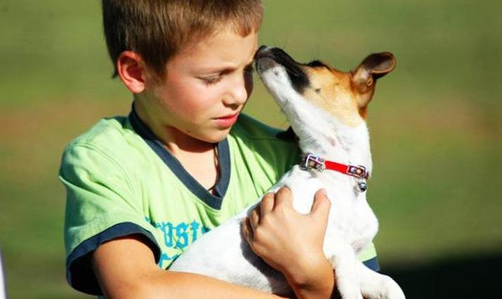 Зачем детям домашние животные?  | животные | школажизни.ру