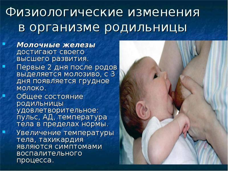 Молозиво при беременности – на каком сроке выделяется (20 фото): когда появляется у беременных и как выглядит, причины