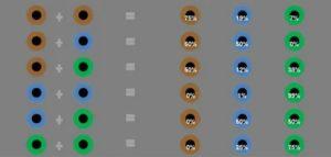 Какого цвета бывают глаза у новорожденных детей и почему они меняются