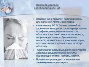 Клебсиелла пневмонии - лечение клебсиеллы у грудничка и взрослых