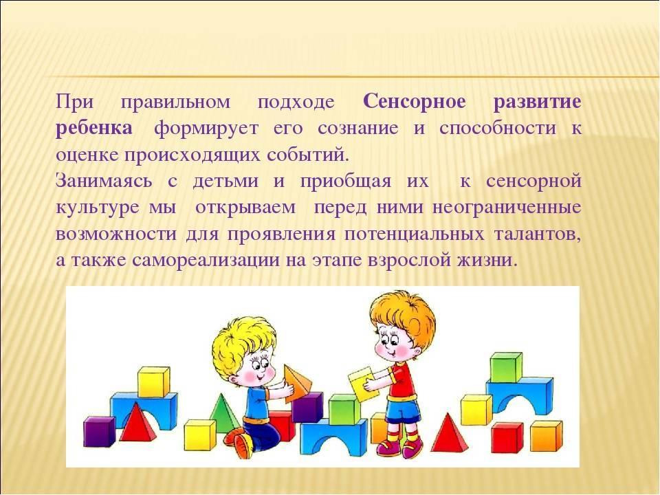 Сенсорика для малышей 2-3 лет: принципы воспитания