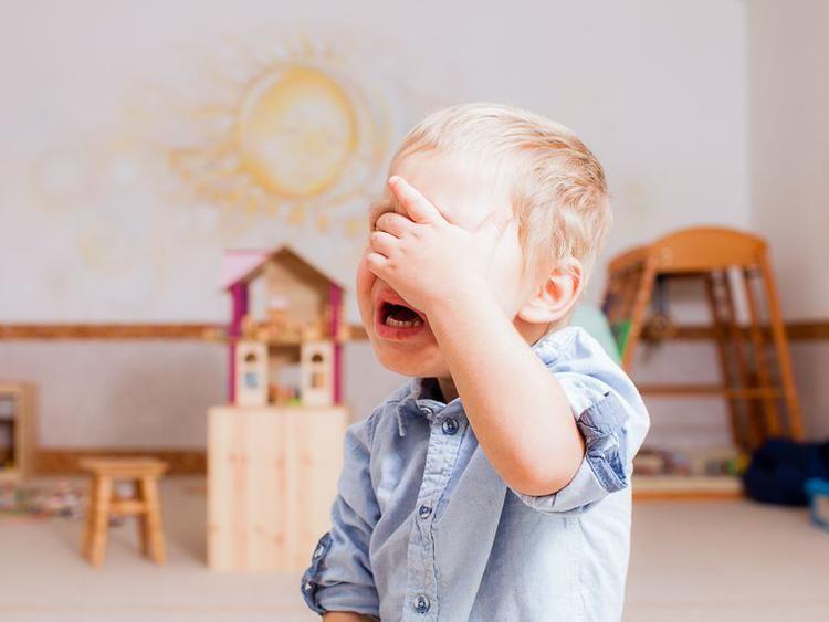 Ребенок плачет в детском саду комаровский