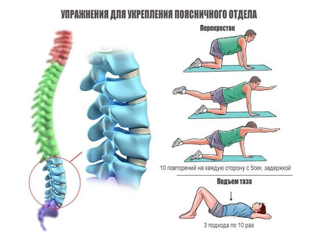Остеохондроз при беременности: симптомы и лечение, чем лечить хондроз поясничного отдела, мази при грудном остеохондрозе