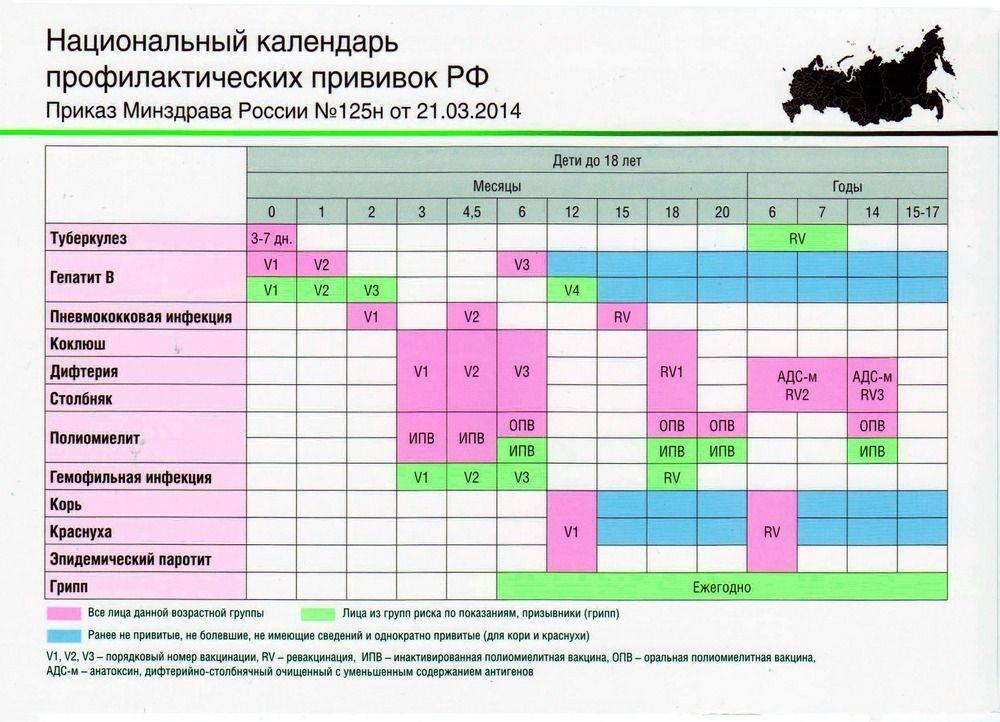 Защищаем ребенка от опасных болезней: график прививок в россии и используемые вакцины