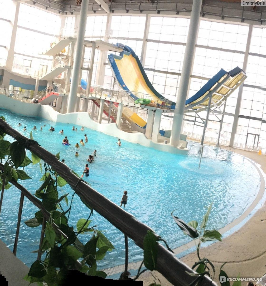 Аквапарк мореон, москва, ясенево. отели рядом, фото, сайт, цены, как добраться — туристер.ру