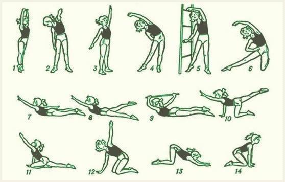 Упражнения лфк при сколиозе у детей