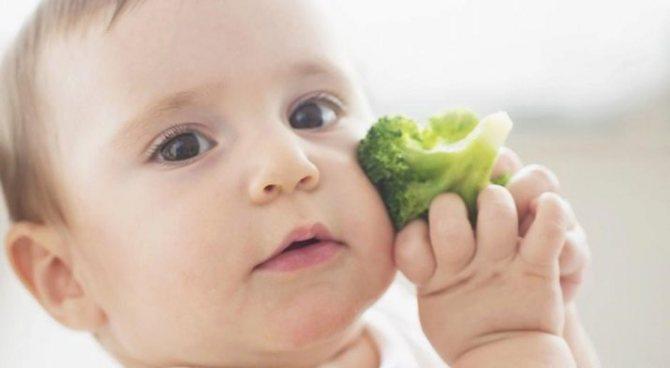 Какие ягоды можно давать ребенку и с какого возраста — польза без аллергии
