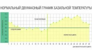 Температура перед месячными: что делать при повышении выше нормы?