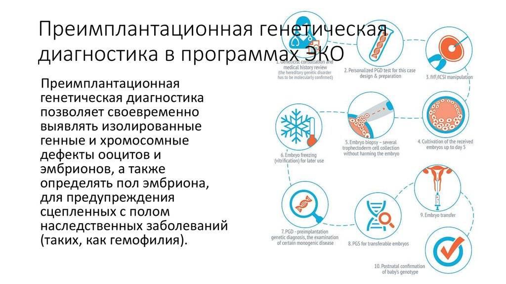 Преимплантационная генетическая диагностика или преимплантационный генетический тест эмбриона (пгд/пгт) - институт бернабеу