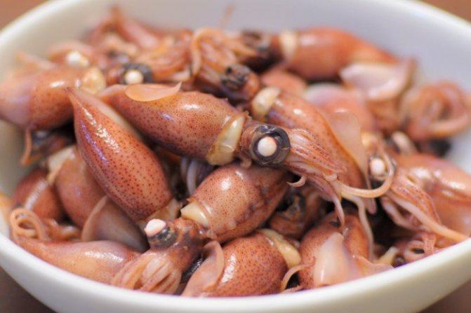 Можно ли кормящей маме креветки и другие морепродукты (кальмары и мидии) при грудном вскармливании