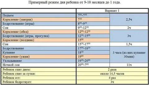 Режим дня ребенка в 1 год и 4, 5 или 6 месяцев: таблица по часам