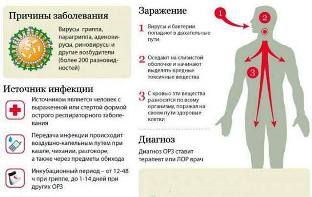 Лечение орви у детей до года и в год (болезнь в первые месяцы жизни ребенка)