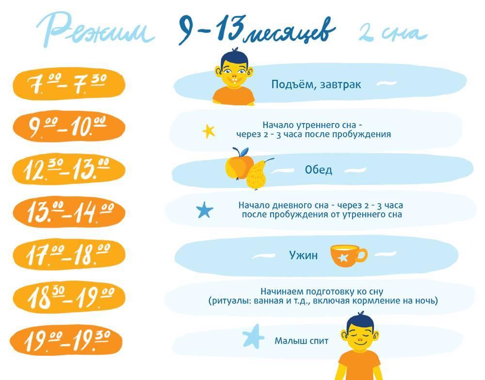 Как выглядит режим ребенка в 8 месяцев