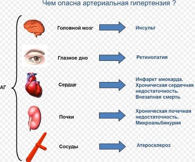 Детский кардиолог об артериальной гипертензии у детей и подростков
