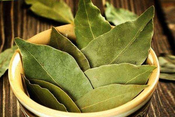 Лечение сыпи при аллергии народными средствами