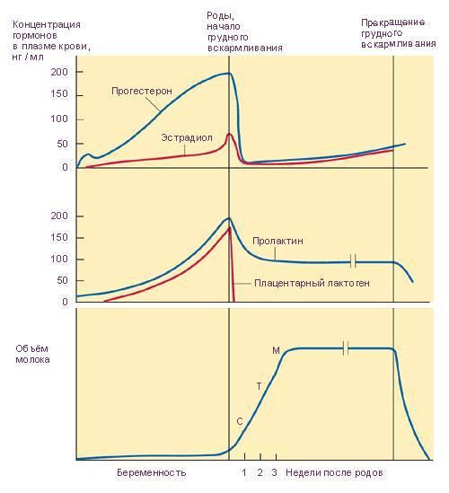 Как выявляется отклонение показателей паратгормона