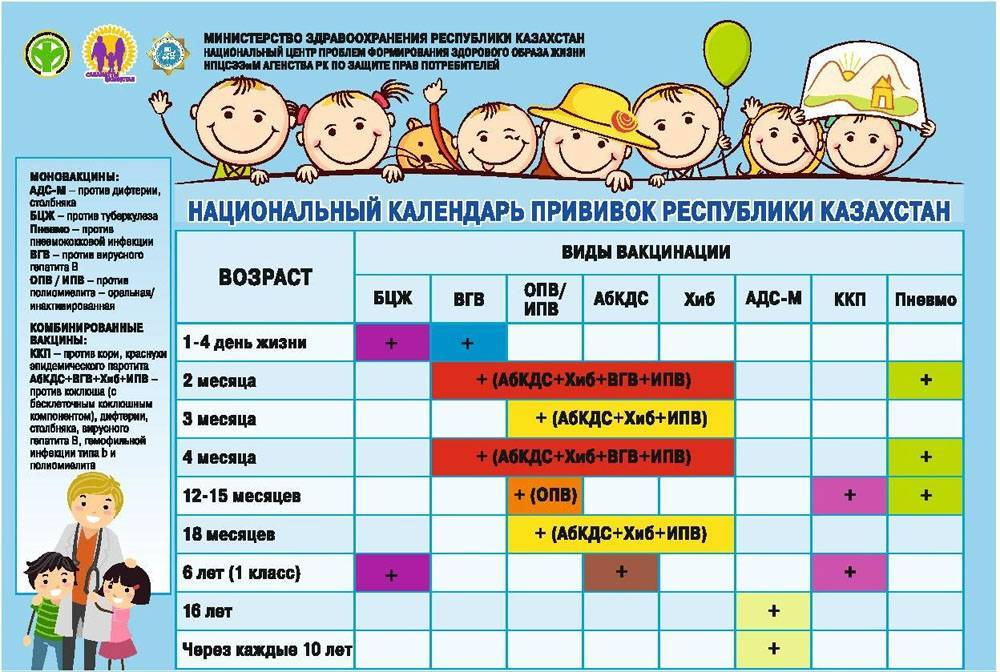 Рекомендуемые и обязательные прививки ребенку после года