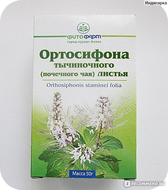 Почечный чай при беременности: можно ли пить во время вынашивания плода, а также инструкция по приготовлению средства от отеков