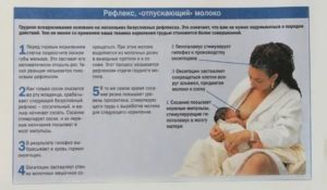 Можно ли при температуре кормить грудью, что делать, как лечиться кормящей маме, не становится ли опасным грудное молоко
