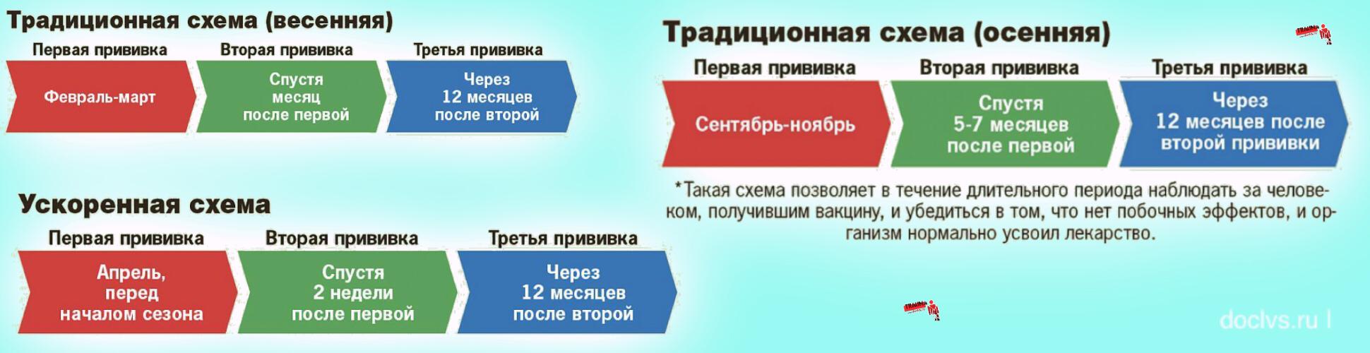 Вакцина от клещевого энцефалита для прививки