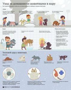 Какое животное лучше завести в квартире, для ребенка?