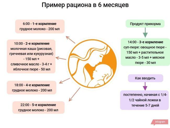 Введение прикорма (основные принципы) - искусственное вскармливание