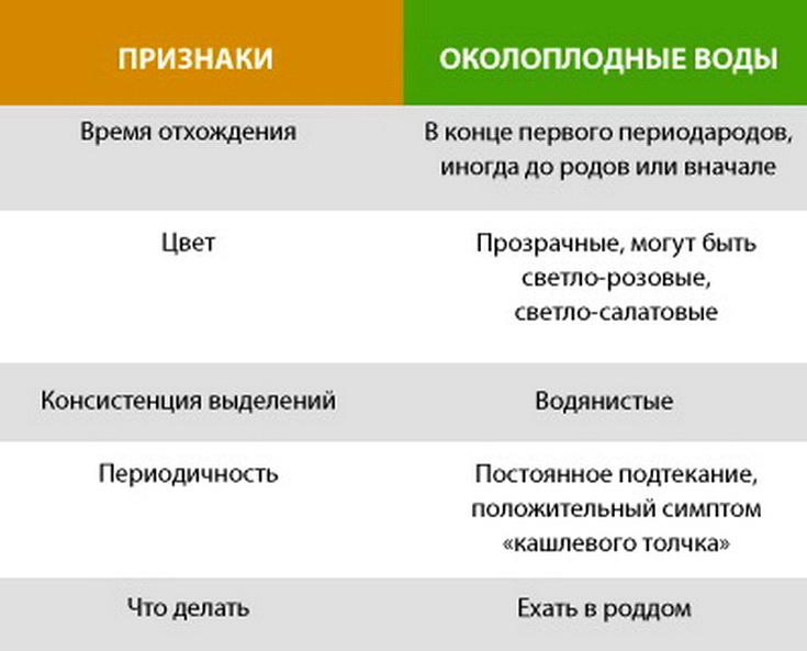 Вторая беременность: как проходит, признаки на ранних сроках, отличие от первой беременности / mama66.ru