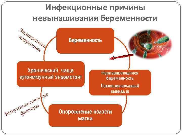 Привычное невынашивание: причины и лечение / mama66.ru