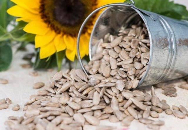 Можно ли тыквенные семечки кормящей маме при грудном вскармливании?