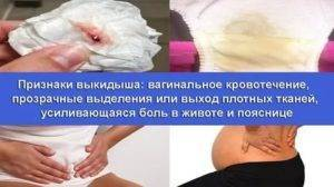 Признаки на ранних сроках беременности, симптомы повторной и многоплодной беременности