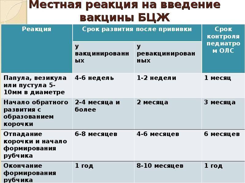 Ревакцинация бцж: сроки повторной вакцинации и ревакцинации, сколько действует прививка от туберкулеза,  когда и в каком возрасте делают бцж повторно