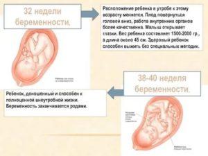 39 неделя беременности: предвестники родов и боли в животе
