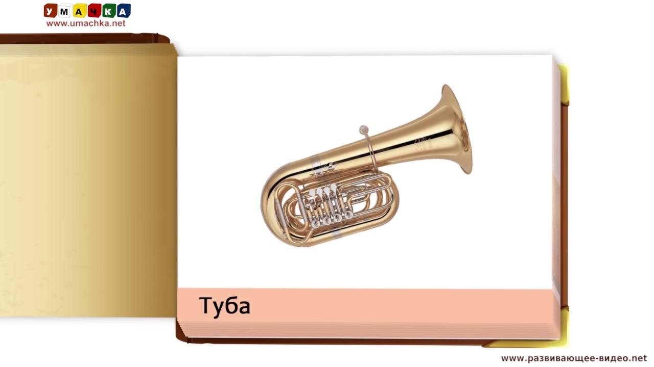 Знакомимся с инструментами симфонического оркестра