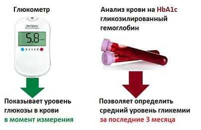 Гликированный гемоглобин — норма при беременности, подготовка к исследованию