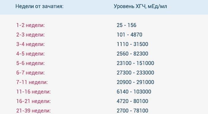 Почему медленно растет хгч? | vseproberemennost.ru