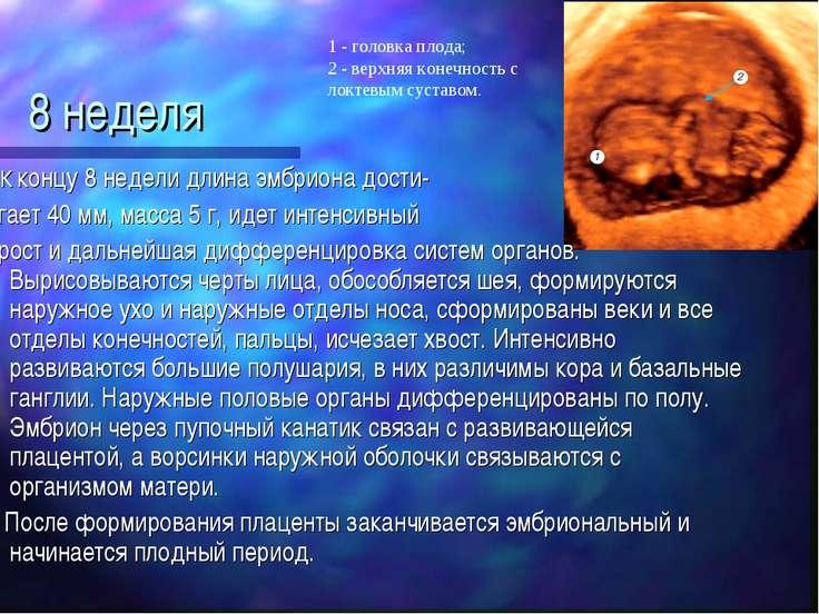 Преждевременное созревание плаценты при беременности