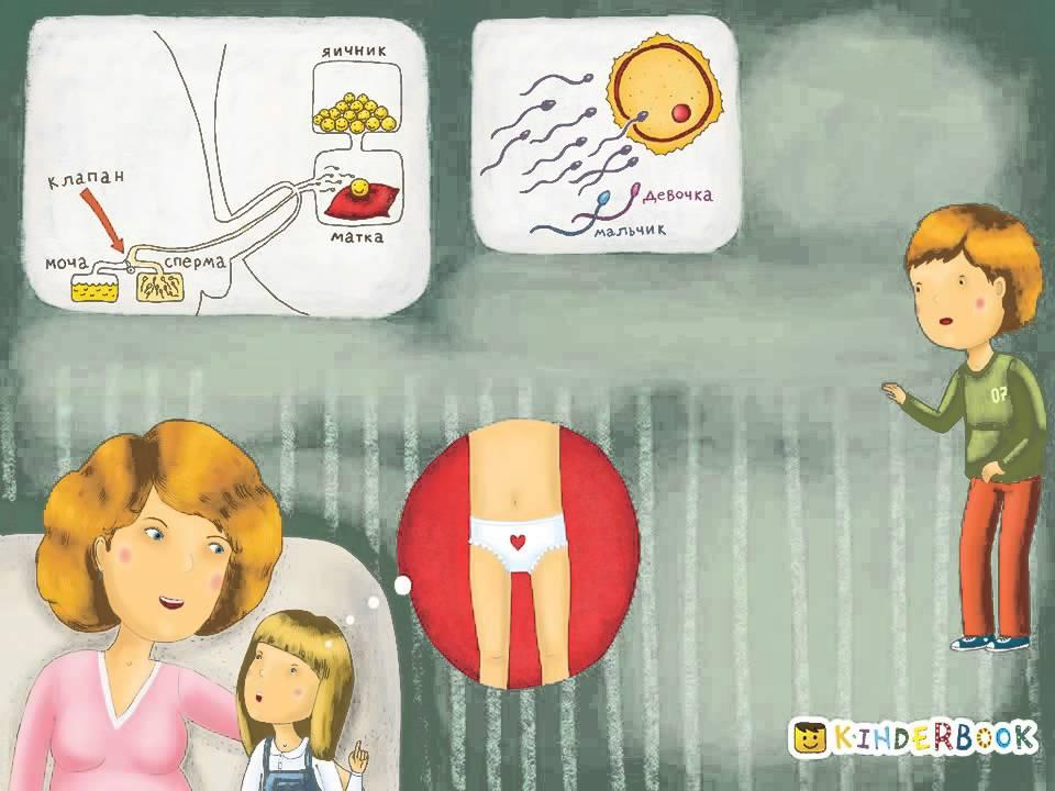 Как объяснить ребёнку откуда берутся дети: особенности диалога с малышом, подростком