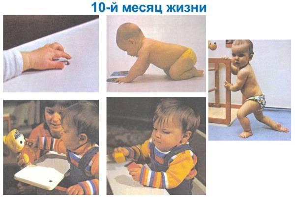 Развитие и умения грудничка в 10 месяцев