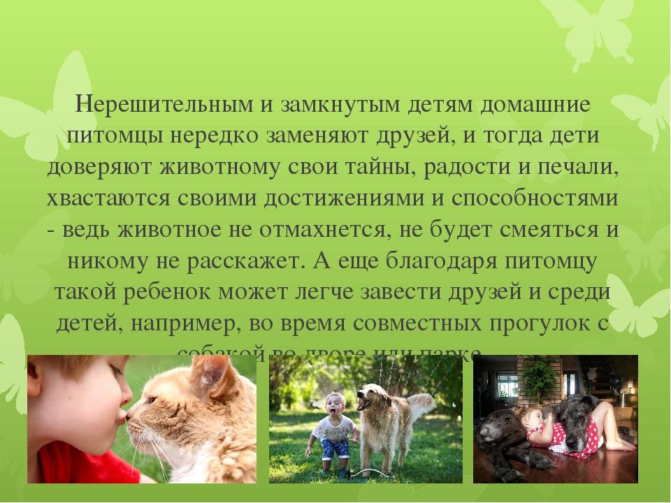 Дети и домашние животные: плюсы и минусы | medical note