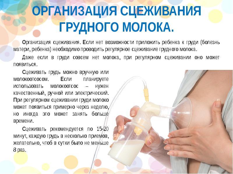 Нужно ли сцеживать молоко после каждого кормления и сколько молока за раз